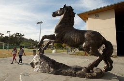 Bronco Statue-The Bronco Statue at the Bronco Commons at Cal Poly Pomona January 22, 2013.