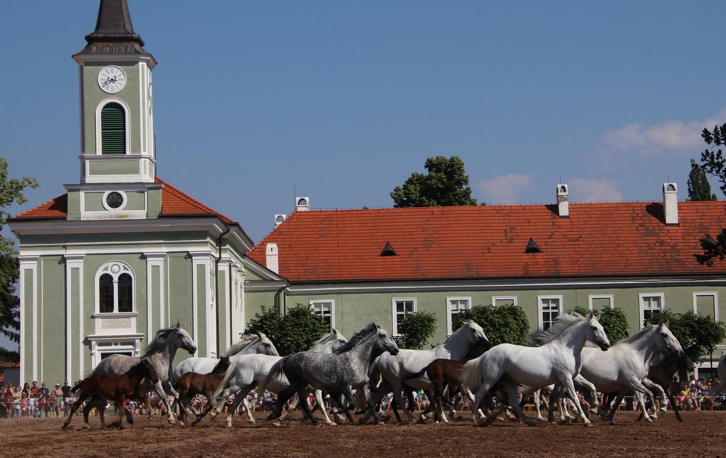 Kladruby nad Labem: Habsburg Stud  now a UNESCO World Heritage Site